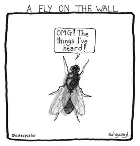 fly-on-the-wall-print
